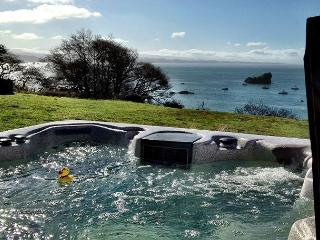 Treasure Cove~Ocean Views From The Hot Tub, In Town, Walk to Beach, Dogs too - Trinidad vacation rentals