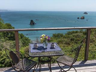 Pelican's Nest~ Nautical & Beach Lover's Perfect Getaway, bring the dog too! - Trinidad vacation rentals