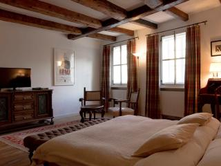 IV Perfect Apartment in Perfect Historic Locaction - Salzburg vacation rentals