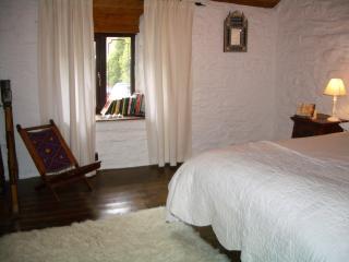 Deer Cottage - Machynlleth vacation rentals