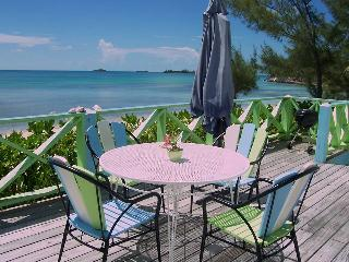 Seagull......My Island Vacation Spot - South Palmetto Point vacation rentals