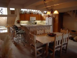 Mountainside home w Ski In / Ski Out - Avon vacation rentals