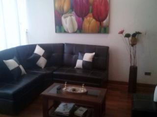 MIrafores Entire TOP FLOOR w BALCONY WI-FI - Miraflores vacation rentals
