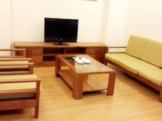 Serviced Âpartment nearby Lotte Central - Hanoi vacation rentals