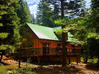 Allenby - TOTALLY Remodeled cabin in Forest Setting.  Less than $300/nt APR** - Tahoe Vista vacation rentals