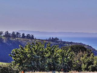 2BR Charming Hillside Guest House, Carpinteria, Sleeps 4 - Carpinteria vacation rentals