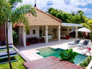 Perfect Villa with Internet Access and A/C - Tumbu Village vacation rentals