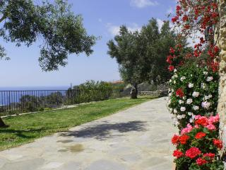 Manolis House - 5 - Agia Paraskevi vacation rentals