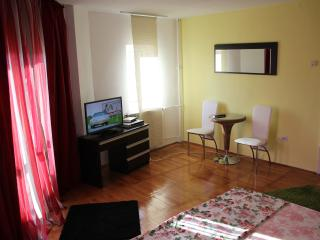 Unirii Luxury studio,Alba Iulia square views. - Bucharest vacation rentals