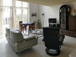 LLAG Luxury Vacation Apartment in Konstanz - 732 sqft, comfortable, modern, central (# 4260) - Konstanz vacation rentals