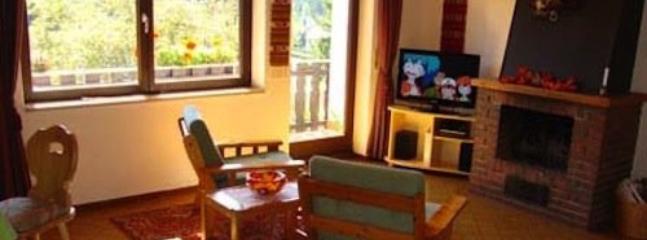 Vacation Apartment in Schluchsee - 753 sqft, comfortable, well-furnished, relaxing (# 512) #512 - Vacation Apartment in Schluchsee - 753 sqft, comfortable, well-furnished - Schluchsee - rentals