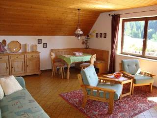Vacation Apartment in Schluchsee - 753 sqft, comfortable, well-furnished - Schluchsee vacation rentals