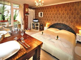 Vacation Apartment in Bad Harzburg - 344 sqft, elegant, close to the forest, inexpensive (# 5442) - Wolfenbüttel vacation rentals
