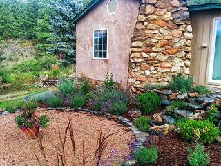 Charming 2 BR Cottage Outside Evergreen, CO - Evergreen vacation rentals
