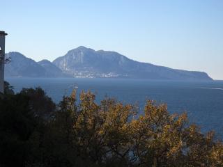 Villa Dafne Sorrento Apt Limoni - Massa Lubrense vacation rentals