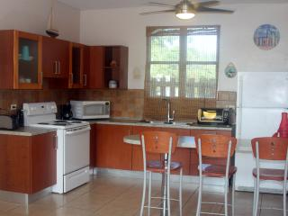 Sea Side 103 - 2 BR Apartment @ Jobos' Beach - Isabela vacation rentals