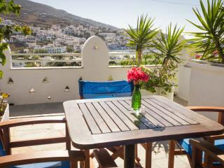 Charming 1 bedroom Batsi Condo with Internet Access - Batsi vacation rentals