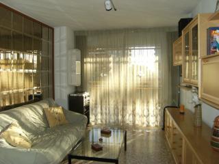 Beautiful Apartment in Spain - Benicasim vacation rentals