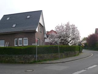 4 bedroom Villa with Internet Access in Bad Bentheim - Bad Bentheim vacation rentals
