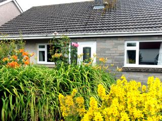 Peaceful Cottage, Close to Beach, Parking, WiFi - Saundersfoot vacation rentals