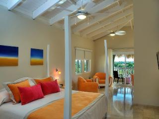 Beach Suite or Junior Suite w/ Gold VIP Bracelets - Puerto Plata vacation rentals