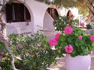 Villa Arni - Studio with Village and Sea View - Batsi vacation rentals