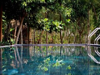 Perfect Villa with Deck and Internet Access - Hoi An vacation rentals