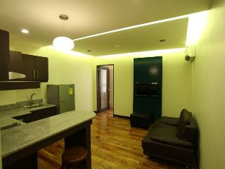 Scenic Condo for rent at Bonifacio Global City - Taguig City vacation rentals