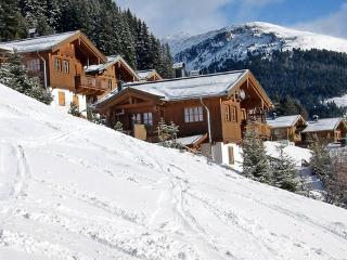 Haus Gletscherblick ~ RA7644 - Almdorf Konigsleiten vacation rentals