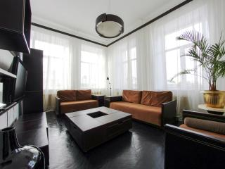 Tree room apartment for rent by day at Liteiny 38 - Saint Petersburg vacation rentals