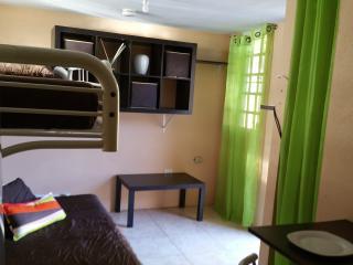Cute, Cozy studio with all the essentials - Ceiba vacation rentals