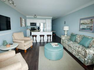 407 Ocean Dunes Villas - 1 Bedroom 1 Bathroom Oceanfront Flat - Hilton Head vacation rentals