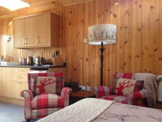 Ardlogie Bothy - Aviemore vacation rentals