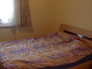 Romantic 1 bedroom Condo in Grindelwald - Grindelwald vacation rentals