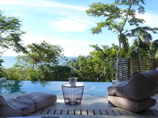 Villa 'Nicholson' with breathtaking ocean view - Santa Teresa vacation rentals