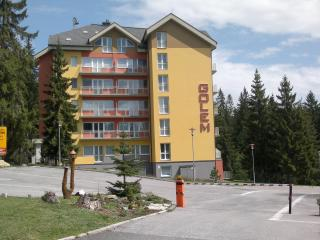 Beautiful 1 bedroom Condo in Tatranska Strba - Tatranska Strba vacation rentals