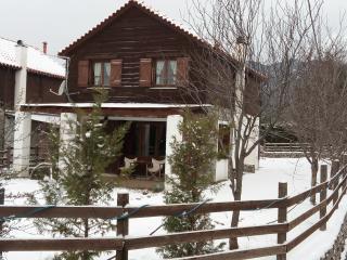 Mountain Chalet 2-Arachova-Parnassos - Arachova vacation rentals