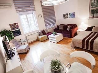 CENTRAL Studio PARLIAMENT - perfect for couples! - Belgrade vacation rentals