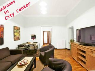 Amazing Last Minute! in City Center - Czech Republic vacation rentals