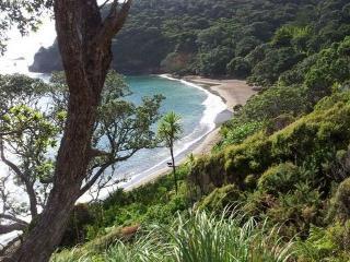 Taupiri Bay Bach - Matapouri vacation rentals