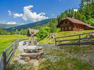 Nice Cabin with Satellite Or Cable TV and Outdoor Dining Area - Kremsbrücke vacation rentals