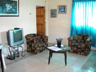 Riocho Retreat 1-BR Apartment near plazas,  beach - Ocho Rios vacation rentals