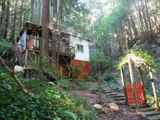 The TreeHouse- Charming Cabin in the Redwoods - Monte Rio vacation rentals