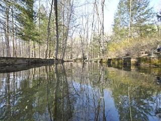 Paradise on Hurricane Creek - Tannersville vacation rentals