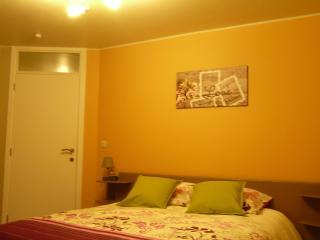 le saule et l'aubépine : l'aubépine - Tournai vacation rentals