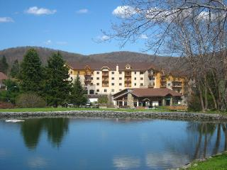1 bedroom Apartment with Deck in Ellicottville - Ellicottville vacation rentals