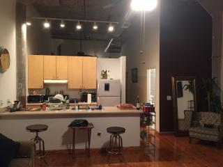 Huge loft in the center of Atlanta (The Knook) - Atlanta Metro Area vacation rentals
