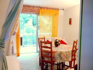 Romantic 1 bedroom Apartment in Amelie-les-Bains-Palalda - Amelie-les-Bains-Palalda vacation rentals