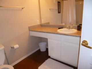 Great Las Colinas Apartment in1LC62072925 - Irving vacation rentals