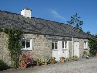 Barn Owl Cottage - Helston vacation rentals